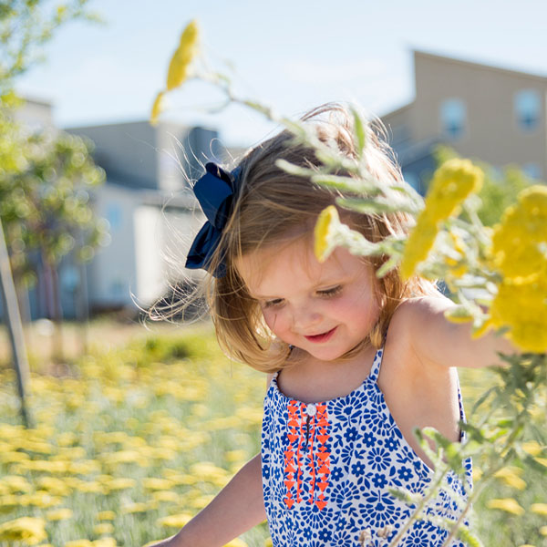 Image of Girl Picking Flowers