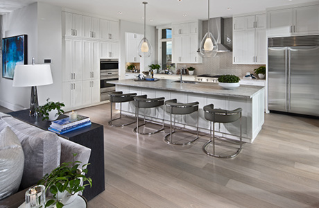 ICON Model Home Kitchen